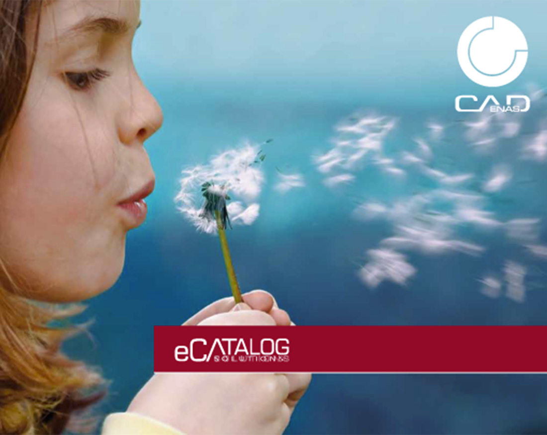 eCATALOGsolutions